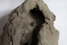 THE CAVE detail, clay, animal skull, metal 37 x 25 x 31 cm